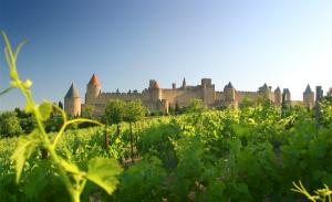 IGP Languedoc