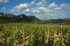 Domaine Val d'Arenc